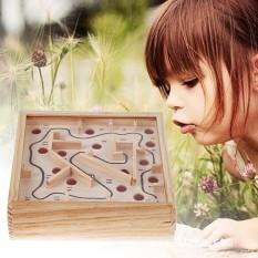 Hộp gỗ đồ chơi lăn bi mê cung