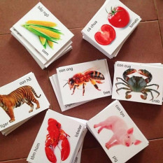 Bộ thẻ học thông minh 16 chủ đề gồm 416 thẻ song ngữ cho bé từ 2 tuổi trở lên