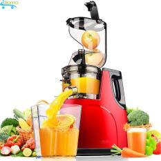 Máy ép hoa quả rau củ tốc độ chậm Hongxin RH-312 giữ nguyên dưỡng chất ban đầu