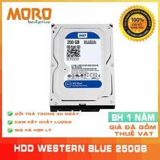 Ổ cứng HDD WD Blue 160GB/500GB/320GB/250GB – Nhập khẩu từ Nhật Bản, Hàn Quốc – Bảo hành 12 tháng 1 đổi 1