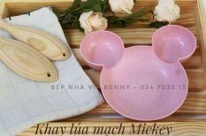 Khay Ăn Sợi Tre Hình Mickey
