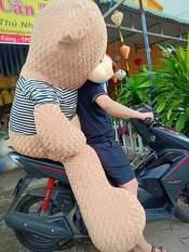 Gấu bông teddy khổ vải 2M cao 1m8