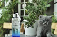 Bộ 2 chai nước thuỷ tinh làm sữa chua uống, sinh tố có quai xách 300ml