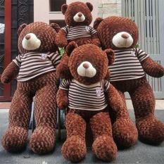 Gấu Bông Teddy Cao Cấp Khổ Vải 1m2 Cao Thực 90cm Siêu To Chuyên Làm Qùa Tặng