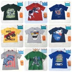 Áo thun Place vải xuất hoạt hình cho bé trai 4-14 tuổi (áo ngắn bé trai, áo xuất dư hình khủng long, cá mập, ván trượt, cờ Mỹ, xe đua, siêu nhân…)