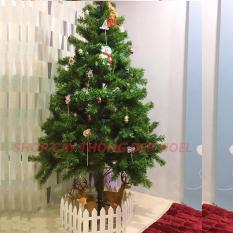 Cây thông Noel xanh loại đẹp cao 1m8