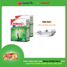Bộ 2 Hộp sữa bột Anlene Gold Movepro Vanilla 1.2kg Tặng Nồi lẩu inox
