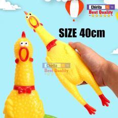 Gà La Hét SIZE 40cm – Gà Đồ Chơi Cao Su – Gà Huấn Luyện Chó ( Shop Có 3 Size : 17cm,32cm,40cm)