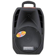 Loa kéo Bluetooth Temeisheng A25 (2 tấc) . 2 micro không dây