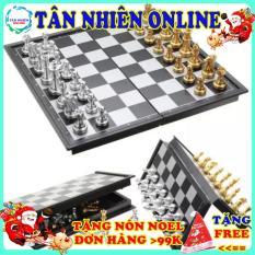 Bàn cờ vua hít nam châm trò chơi giải trí phát triển trí tuệ giá rẻ