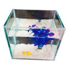 Bể cá mini để bàn 15cm