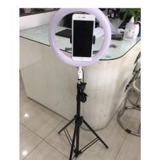 đèn livestream 26cm