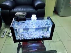 Combo bể cá khung gỗ cỡ lớn – đèn led , lọc cỡ trung (tặng phụ kiện trang trí hồ cá cảnh)