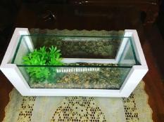 Bể cá mini khung gỗ trắng Ngọc Trinh tinh khôi – kiệt tác trên bàn làm việc
