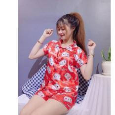 Pijama phi bóng ngắn- Giao đúng màu- hoạt hình ngẫu nhiên
