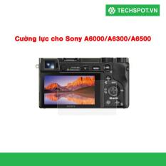 Miếng dán màn hình Sony cho Nex 3/5/6/7 A6000/A6300/A6500 (Trong suốt)