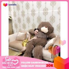 Gấu bông Teddy Cao Cấp khổ vải 2m Cao 1,8m màu xám khói hàng VNXK