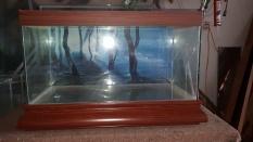 Bể cá 60 x 30 x 40 (cm) ( dài x rộng x cao)