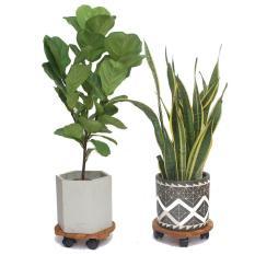 Đế lót chậu cây có bánh xe (Màu Vàng), Thương hiệu ANKAN, Giúp nâng chậu cây, Chậu hoa, 100% từ gỗ tràm bông vàng, Đường kính 30cm