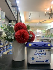 [ Chính Hãng ] Sữa Aptamil Đức PRE