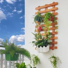 [Eden365] Bộ 2 khung gỗ trang trí treo tường – Dùng cả ngoài trời và trong nhà