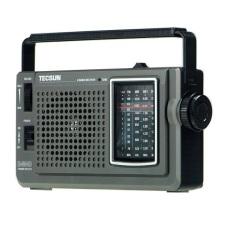 Radio Tecsun R-304 (Đen)